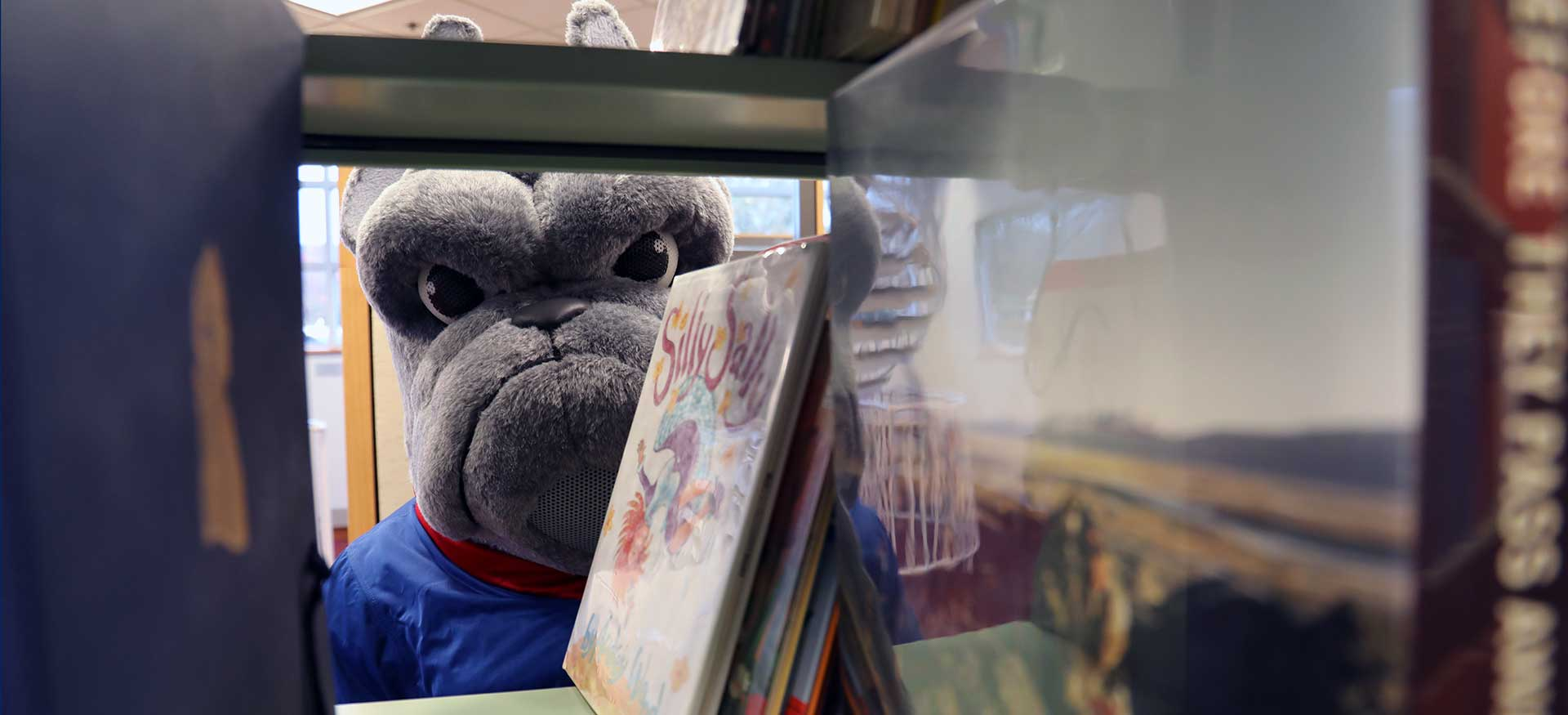 Bulldog peeking through library shelves banner