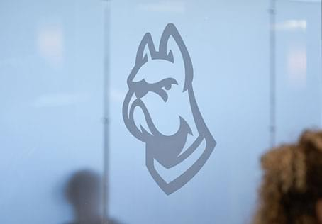 bulldogs logo on wall