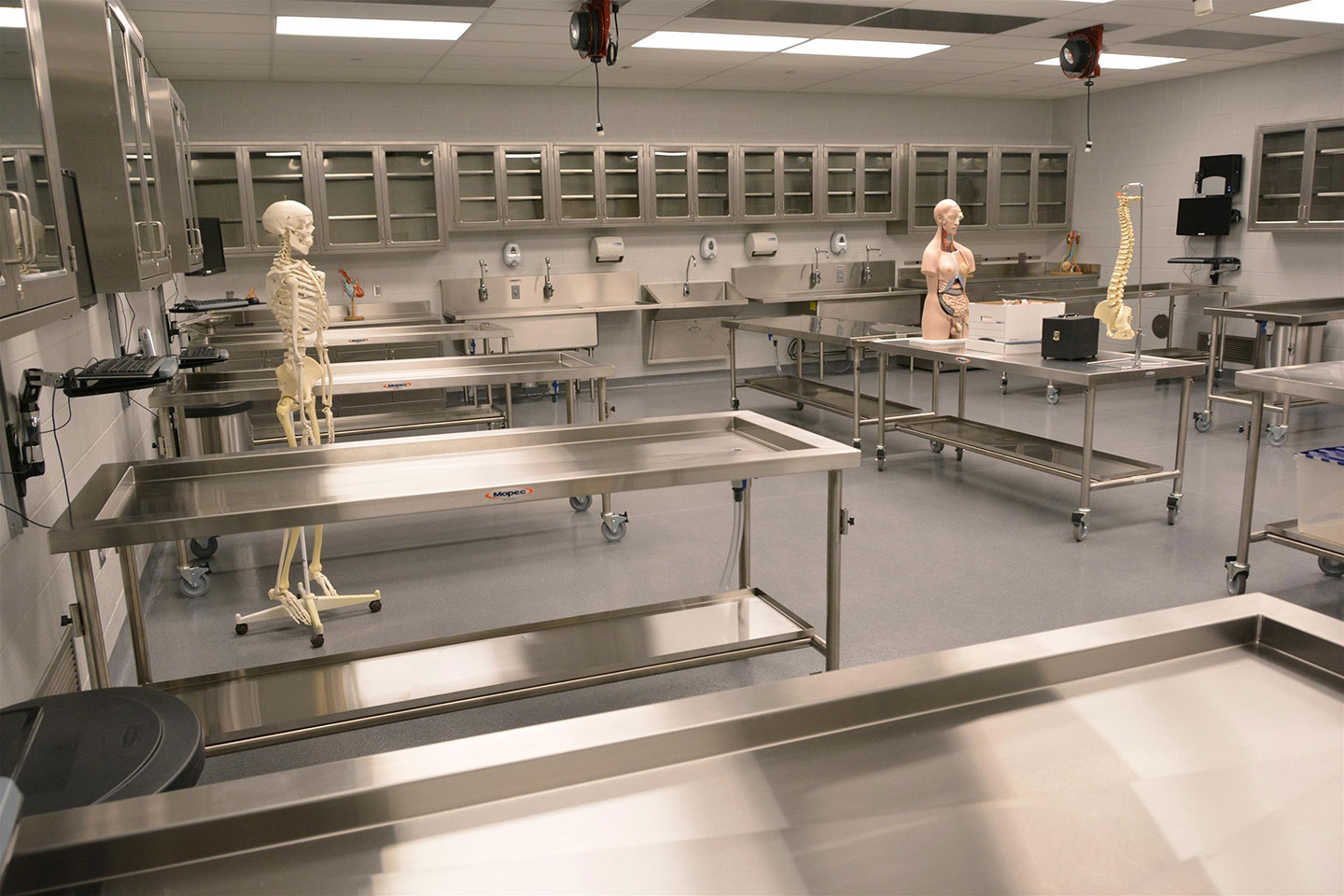 Gross Anatomy Lab